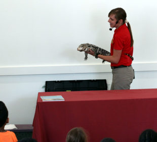 Reptiles Alive at Woodridge Library in Washington DC